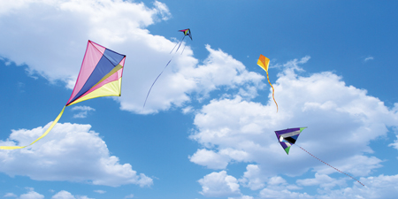 sky ceiling cloud light lens Item # Kite Sky Diffuser ... Price $39.95 + S/H
